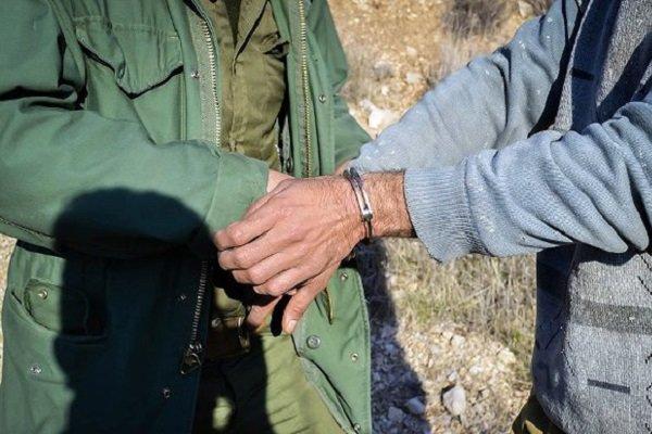 شکارچیان غیرمجاز در مهدی شهر دستگیر شدند، کشف لاشه قوچ وحشی