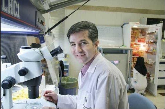 بهره برداری از کارخانه دارویی سلول درمانی تا شهریور ، صادرات دانش فنی به مالزی
