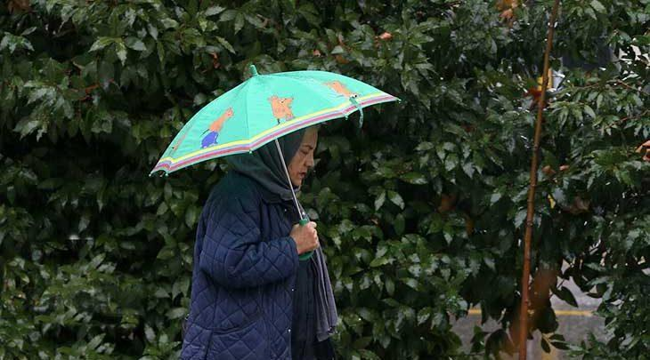 پیش بینی رگبار باران و رعد و برق در نیمه شمالی کشور