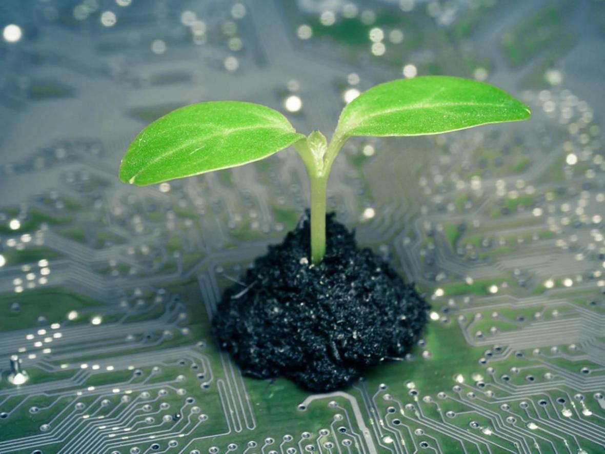 روشی نوین برای به دام اندازی باکتر های مفید خاک کشف شد