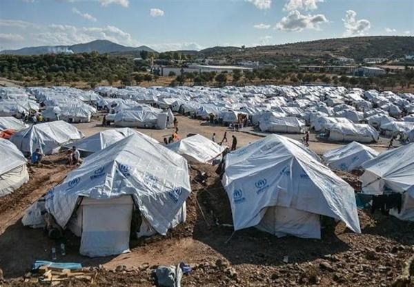 پناهندگان در یونان: حقوق حیوانات در اروپا از ما بیشتر است
