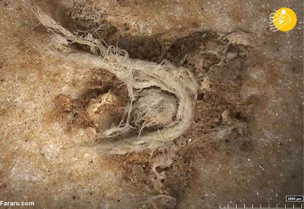 کشف قدیمی ترین طناب از دوران نئاندرتال!